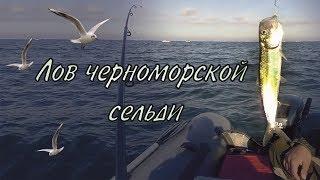 Лов черноморской сельди / Black sea herring fishing