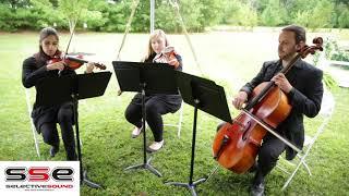 Wedding music string trio by Cleveland wedding DJ Selective Sound Entertainment