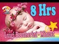 ❤8 HOURS❤ Luigi Boccherini - Minuet ♫♫♫ Lullaby for babies to go to sleep ♫♫♫ Classical Music Box