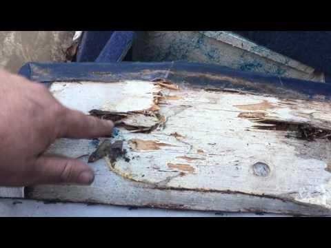 Refurbishing A Bayliner Capri: Phase 1