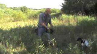 Free Hunting Dog Training Videos - Bird Launcher - Introduction