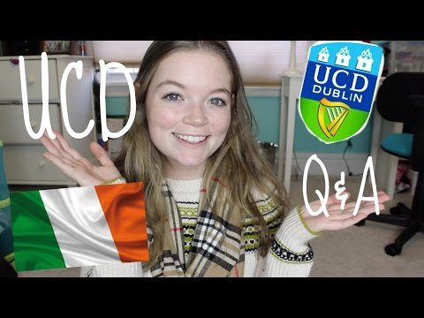 Your UCD Questions Answered! || UCD Q&A