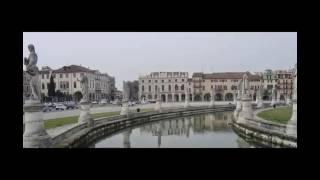 l Universidad Padua - Q l