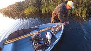 Охота #234 открытие на утку