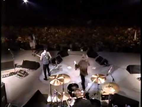 U2 Live at the Amnesty International Concert 1986
