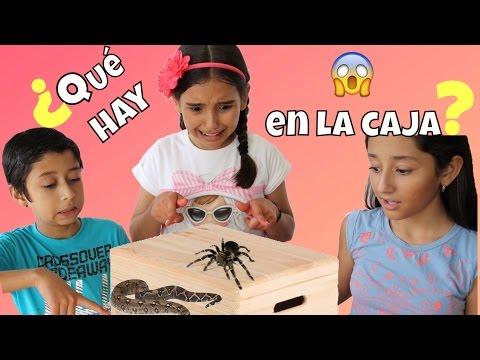 ¿QUÉ HAY EN LA CAJA? / WHAT'S IN THE BOX CHALLENGE ♥️ - Gibby
