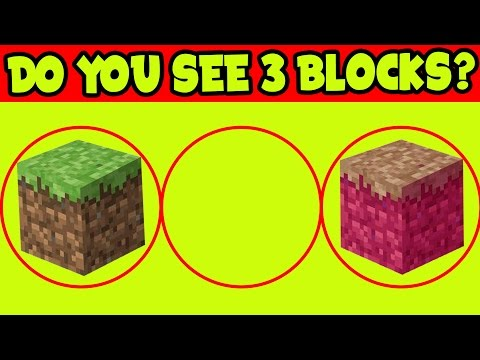 ARE YOU COLOR BLIND!? // HOW COLOR BLIND PEOPLE PLAY MINECRAFT // Minecraft COLOR BLIND TEST