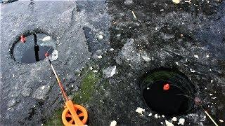 Первый лед на водохранилище. Ловля плотвы. Заготовка живца для щуки.