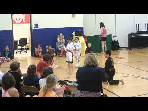 Calvin, Larkin & Sydney martial arts demo @school