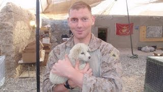 BREAKING NEWS: Fmr. Marine Arrested by FBI for Patriotic Facebook Posts!! SHARE EVERYWHERE!