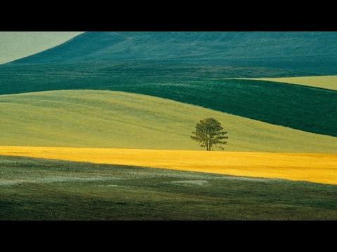 Franco Fontana : landscapes (Fine Art Photography)