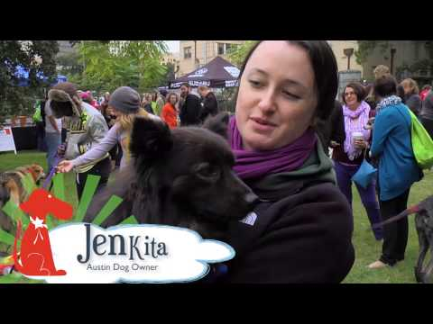 Midtown Mutt-minster Dog Show | 2012 Recap