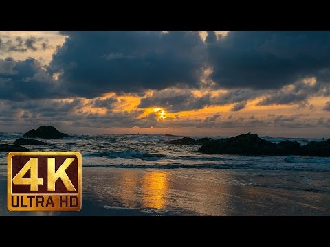 Winter Beach - 4K UHD Relaxation Video - 3 Hours Video | Ruby Beach. Olympic Peninsula