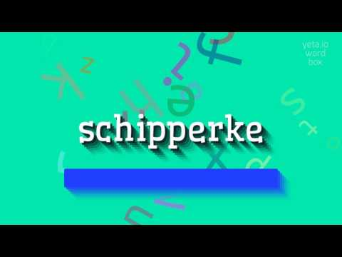 How to say 'schipperke'! (High Quality Voices)