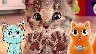 МОЙ МАЛЕНЬКИЙ КОТЕНОК симулятор милого котенка с веселым котиком #Джемом