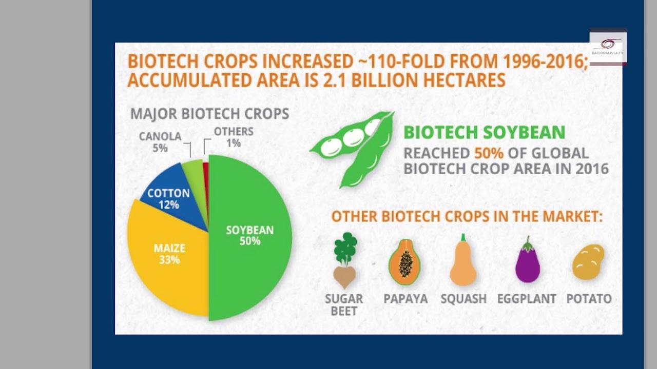 GMO jest niegroźne i pożyteczne, więc czemu jest zwalczane? Marcin Rotkiewicz
