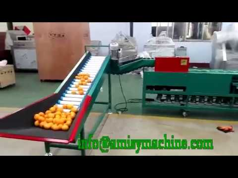 Fruit Vegetable Sorting Grading Machine