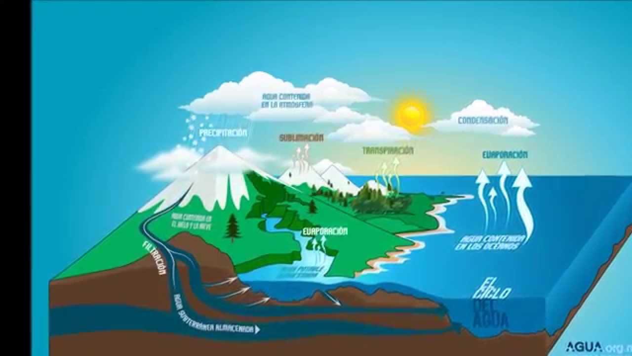 Ciclo Del Agua Hidrológico Youtube