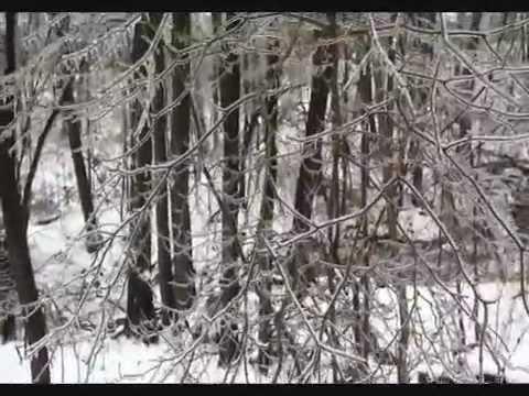 Ice Storm - Toronto 2013