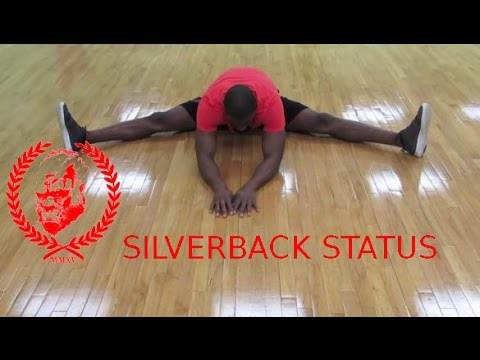 Great Stretching Routine for Athletes