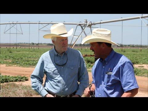 A Visit to the Farm | Sen. John Cornyn visits the Boening Farm