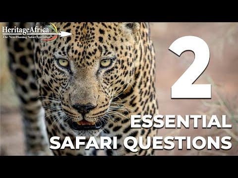 2 Essential Safari