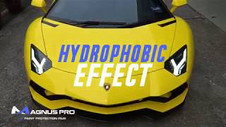 Lamborghini Aventador S x MAGNUS PRO Paint Protection Film PPF