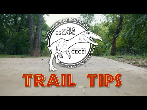 Dinosaur Search Trail Tips
