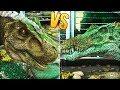 TYRANNOSAURUS REX VS SPINOSAURUS | Ark: Survival Evolved Dinosaur  Battles