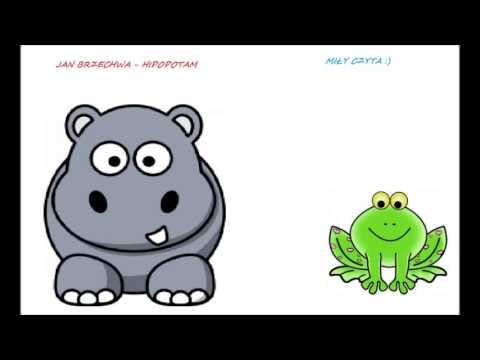 Jan Brzechwa Hipopotam Miły Czyta