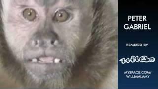 Peter Gabriel - Shock the Monkey (Willbe remix)