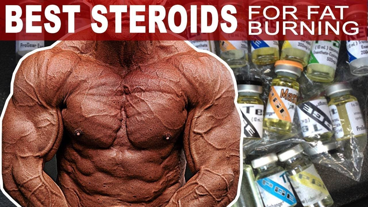 What steroids to take to lose fat street/slang names for steroids