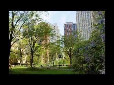LaL  New York Fordham University