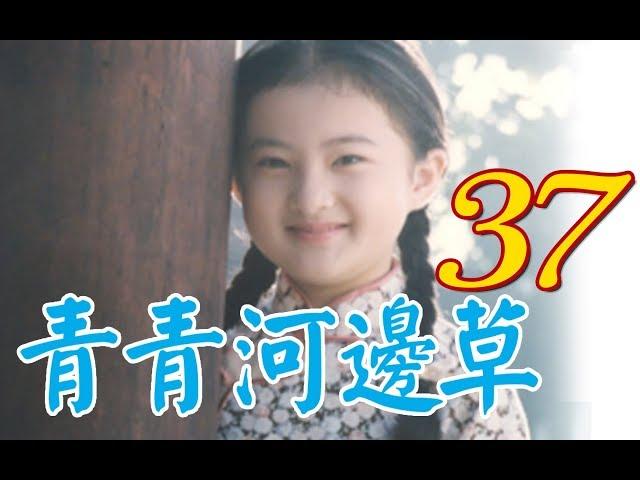 『青青河邊草』 第37集(馬景濤、岳翎、劉雪華、徐乃麟、金銘) #跟我一起 #宅在家