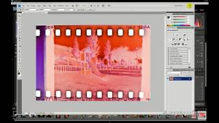 how to scan for free your lomo negatives without a scanner