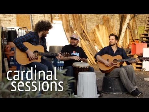 Dispatch - Flying Horses - CARDINAL SESSIONS