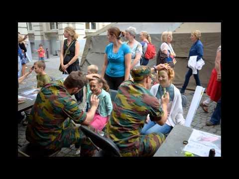 BRUSSEL 2015 FEEST WARANDEPARK 21 juli / Daniel Mostrey