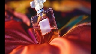 Top 5 Perfumes Creed perfume importado