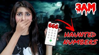 Calling *HAUNTED* Numbers at 3 am 😱 You Should *NEVER* Call !! Little Miss Shree