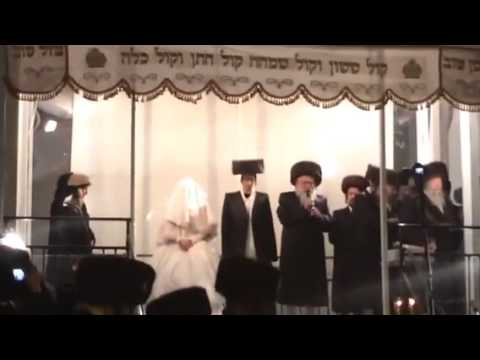 Bobov Chuppah at big wedding 2014