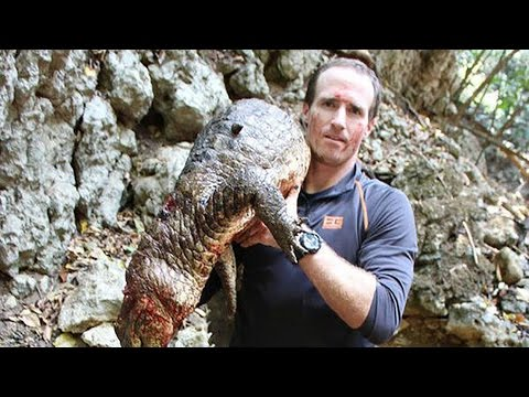 Drew Brees Kills Crocodile with His Bare Hands