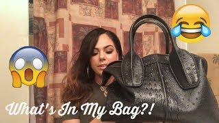 WHAT'S IN MY BAG? | FUNNY EDITION