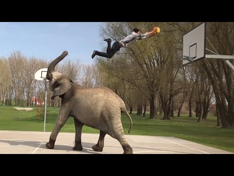 Awesome Archive: Soccer, Skateboarding & Basketball Dunks | People Are Awesome