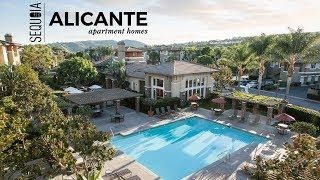 Alicante at Aliso Viejo Apartment Homes | Aliso Viejo, CA | Sequoia