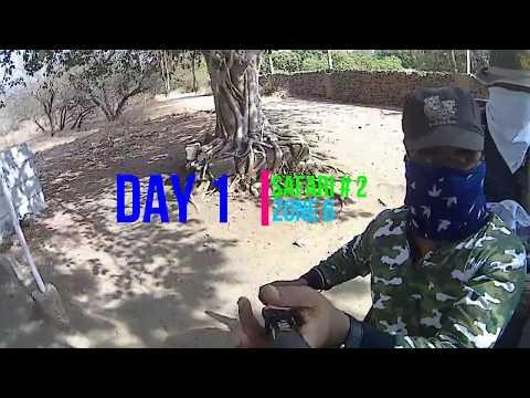 Vlog # 19 The Lion King   Gir National Park   Sasan Gir   Part 2   VJS Vlogs
