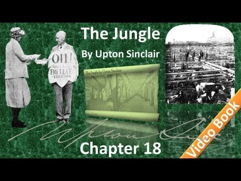 Chapter 18 - The Jungle by Upton Sinclair
