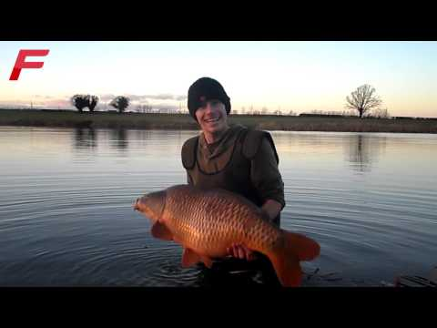 Rita + Friendly Common - Fosters Of Birmingham Syndicate Winter Capture