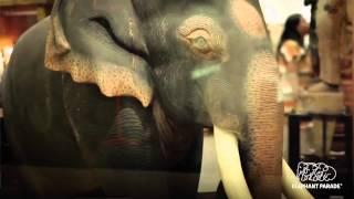 elephant parade hong kong and nadya hutagalung