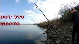 Столько рыбы я ещё не ловил Клевало на каждом забросе Рыбалка на спиннинг