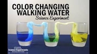 🔥Top 10 Science Experiments - Experiments You Can Do at Home Compilation🔥